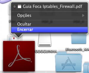 PDF_21